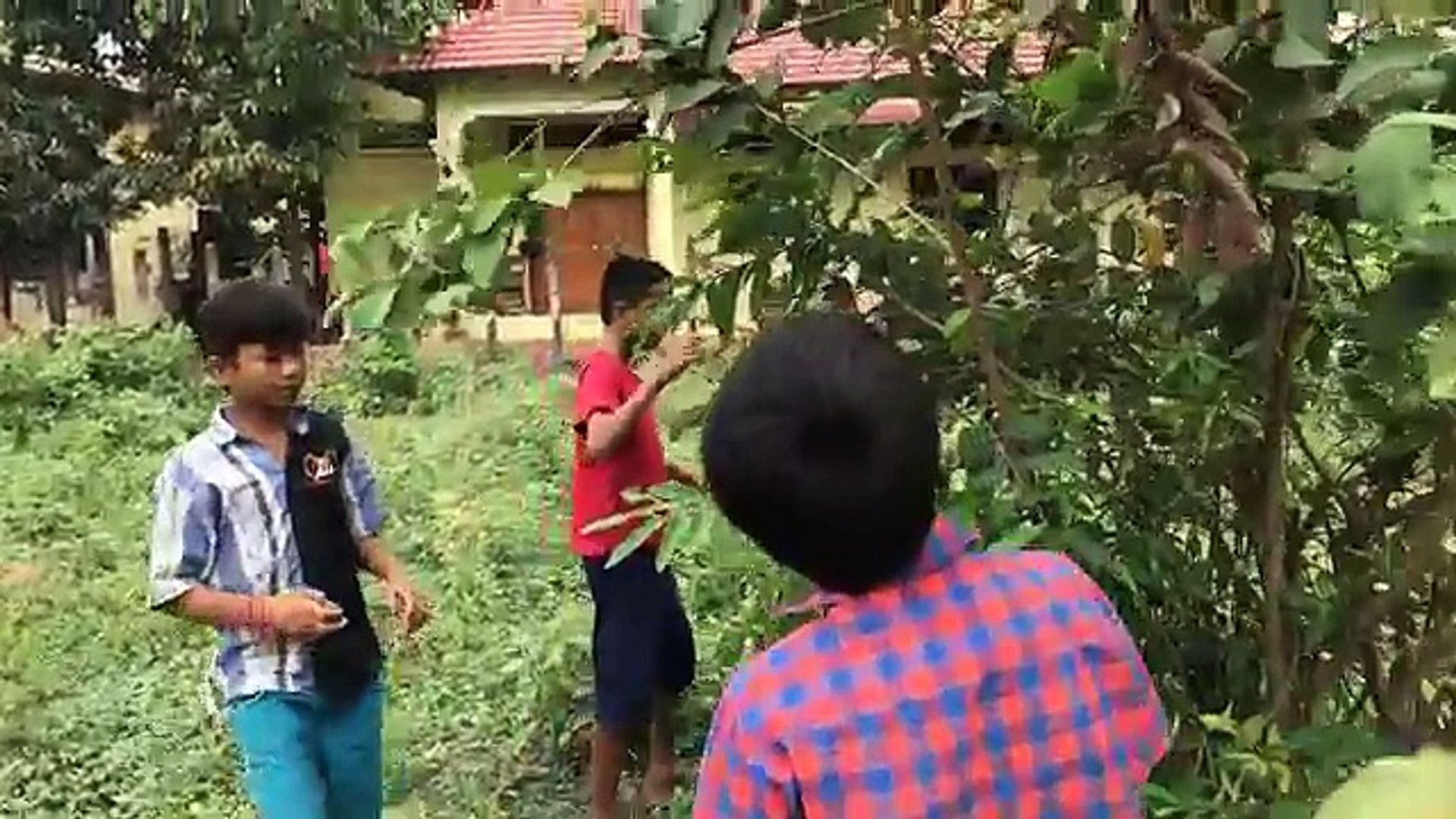 Amazing Boys Catch Big Snake During Collect Guava Fruit In My Village - How To Catch Snake By Hand