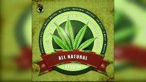 Faya Gong - All Natural Riddim Mix Promo 2017