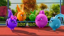 Cartoons for Children - SUNNY BUNNIES EASTER BUNNIES - Sunny Bunnies - Funny Cartoons For Children