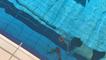 À Vire, une quarantaine de tireurs au championnat de France jeunes de tir subaquatique