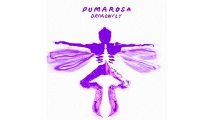 Pumarosa - Dragonfly