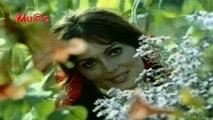 Cahit Berkay - Devlerin Aşkı (Yeşilçam Film Müzikleri HD) Mu©o