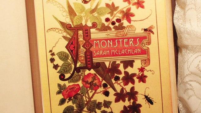 Sarah McLachlan - Monsters