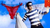Pria ketahuan menyimpan 10.000 pakaian dalam wanita curian - Tomonews
