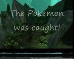 Pokre plasma grenades - Halo 3 rare gold pokemon