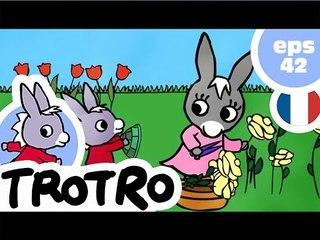 TROTRO - EP42 - Trotro et la tortue