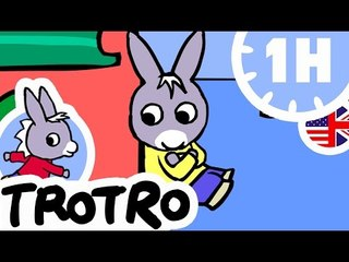 TROTRO - 1 hour - Compilation #04 - Trotro play with his feet