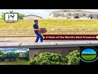 A Taste of the World's Best Prosecco with Masottina Winery & Wine Oh TV