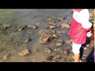 Sabah Video