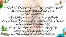 aloe vera benefits aloe vera benefits in urdu hindi aloe vera benefits for skin aleo vera ke fayde