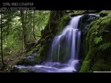 The most beautiful waterfalls