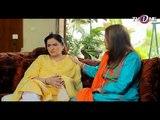 Wafa Ka Mausam_Episode (06)_ Urdu PAkistani New Drama 2017