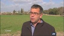 Agriculture : la société israélienne NRGene entend mettre à profit les dernières avancées de la recherche sur le séquençage du génome du blé, pour enrayer le fléau de la malnutrition dans le monde