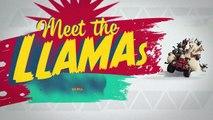 Memenuhi llamas - Farmers Llamas - -BWcMOlkOslc