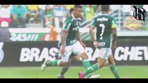 Gabriel Jesus   Manchester City   The Beginning - Dribbling Skills & Goals 2017 HD