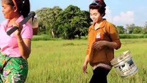 Amazing Fishing at Pailin Province - Cambodia Traditional Fishing - Khmer Net Fishing (Part 219)