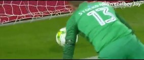 Le gardien de but de Brighton, David Stockdale, a marqué deux buts contre son camp !!