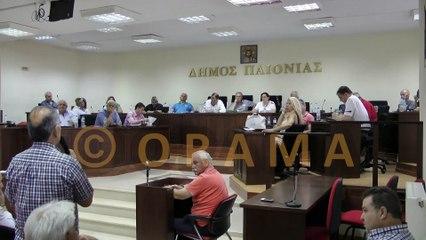 Δημοτικό Συμβούλιο Δήμου Παιονίας 30-06-2016