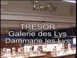 Tresor  - Galerie des Lys - Dammarie les Lys