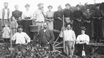 Paroles de femmes viticultrices. Un regard ethnographique