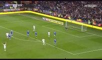 Isaac Hayden Goal HD - Cardiff 0-2 Newcastle Utd - 28.04.2017