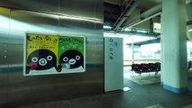 JR東日本 仙台空港アクセス線 各駅停車 (E721系500番台運行) 超広角車窓 進行左側 仙台空港~仙台