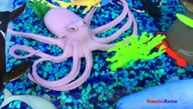 ANIMAL PLANET MEGA OCEAN TUB SHARKS DOLPHINS TURTLES SEAHORSE STARFISH OCTOPUS WHALE CRAB - UNBOXING-xw7X