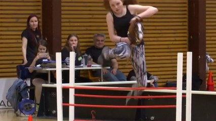 Finns compete in annual hobby horse championship