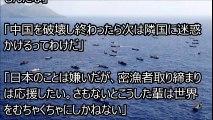 海上保安庁 巡視船vs不審船 中国サンゴ密猟 度を超えた蛮行に、意外な中国人の反応!海上自衛隊ばりの活躍、驚愕の瞬間を御覧ください!