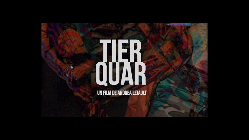Teaser #2 - Tierquar