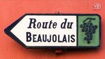 Vins du Beaujolais: Que valent les millésimes 2015 et 2016?