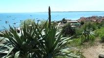 Ballade sur le voilier COTE D'ARGENT au Cap-Ferret