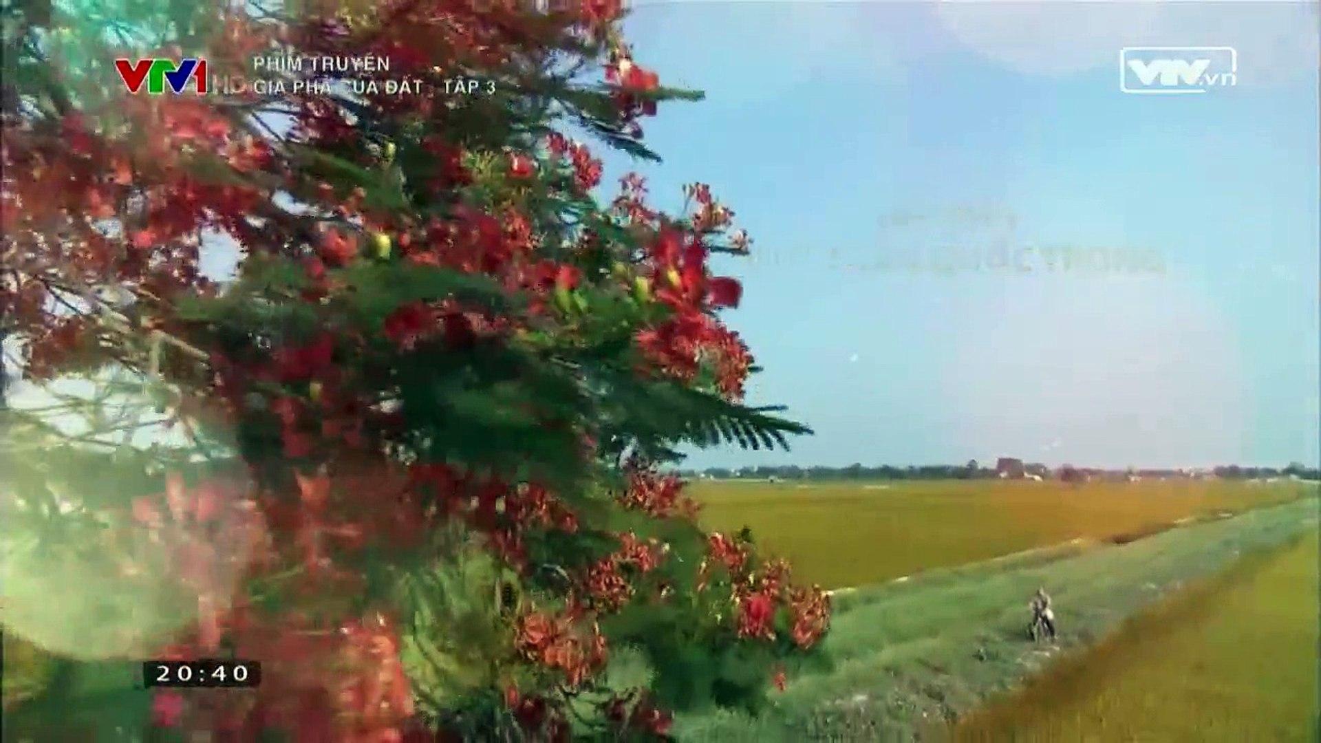 Gia phả của đất - Tập 3 - Phim VTV1