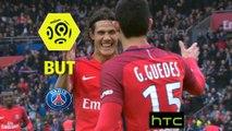 But Edinson CAVANI (76ème) / Paris Saint-Germain - SC Bastia - (5-0) - (PARIS-SCB) / 2016-17