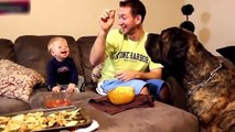 best-funny-babies-funny-babies-compilation-amazing-babies-dancing-funny-baby-15