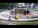 """Aversa (CE) - La fontana di Piazza Vittorio Emanuele ritorna """"bianca"""" (06.05.17)"""