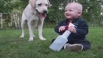Se bébé est plié de rire en jouant avec son chien... Adorable