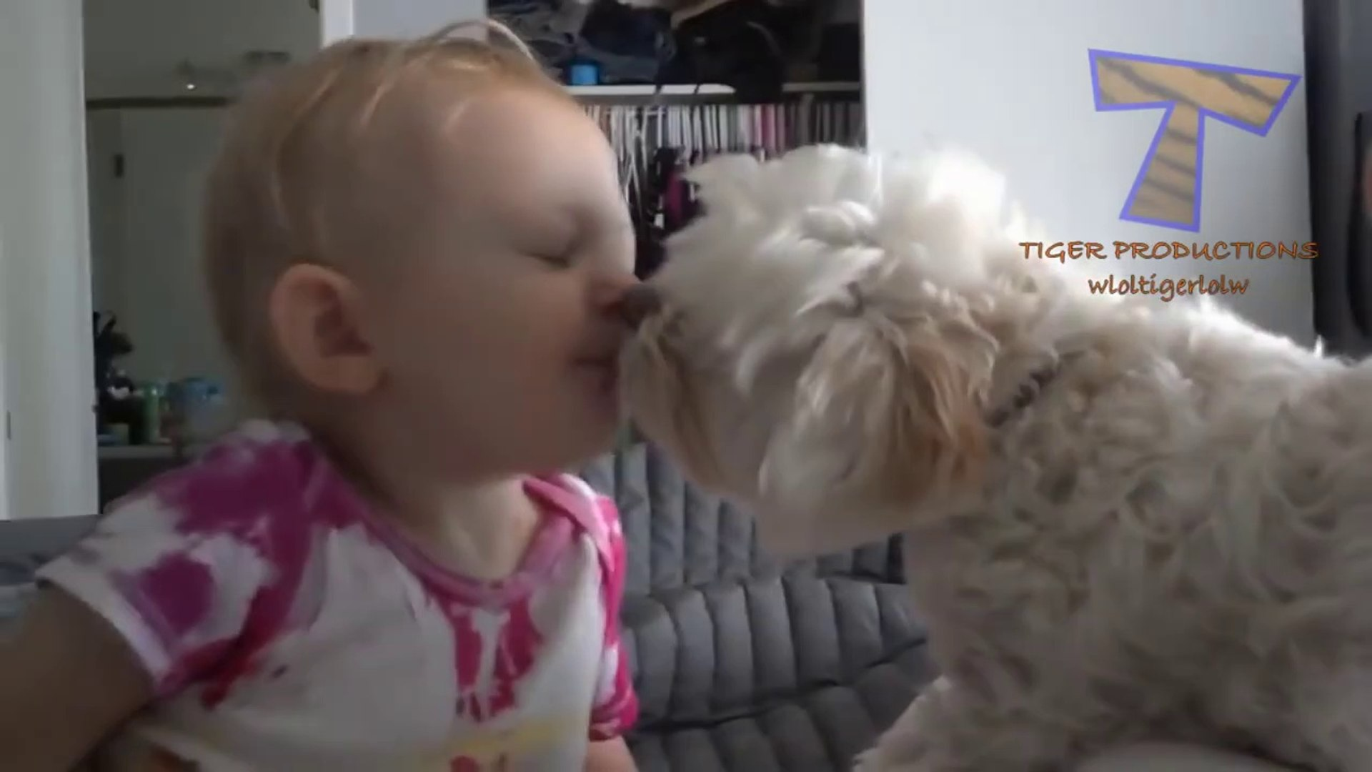 http://www.dailymotion.com/video/x5lijd3_babies-and-pets-having-fun-together-funny-and-cute-baby-ani