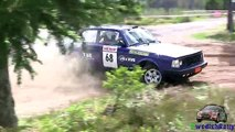 Extreme Volvo Rallying 2016! | Action, crashes & moments!