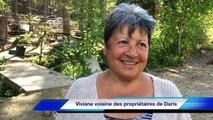 Loup dans le Vaucluse : nos reporters ont retrouvé l'animal près du mont Ventoux