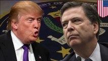 Trump fires James Comey: Donald goes full Apprentice on FBI Director Comey