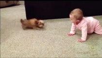Ce bébé parle à un bébé chien.. tellement drôle !