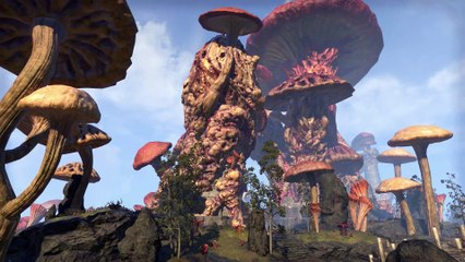 Naryu's Guide to the Great Houses de The Elder Scrolls Online : Tamriel Unlimited