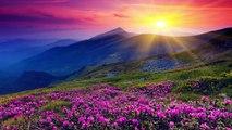 Beautiful Romantic Music: Relaxing Music, Guitar Music, Violin Music, Cello Music, Piano Music ★103 part 1/4