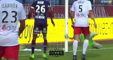 Stephane Darbion  Goal HD - Troyes	2-0	Reims 12.05.2017