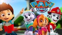 Paw Patrol Full Episodes English New - Pups save Paw Patrol Nick Jr Full Episodes
