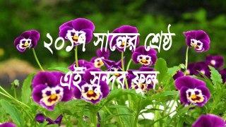 Ei Sundor Ful Sundor Fol bangla islamic song 2017