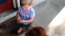 Cette fillette est prete pour Koh-Lanta : elle veut manger la limace