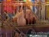 Funhouse Freakout