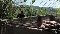 L'agroécologie à la ferme du Carregaut